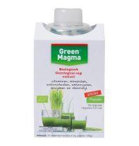 Green Magma 10 x 3 gram sticks met shaker gezondheidswebwinkel