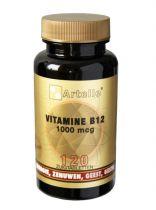 Artelle Vitamine B12 1000mcg 120 zuigtabletten gezondheidswebwinkel