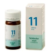 Schussler Celzout Silicea Nr 11 100 tabletten